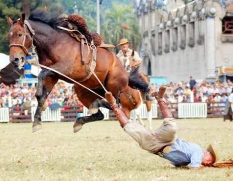 rodeo horse drags cowboy