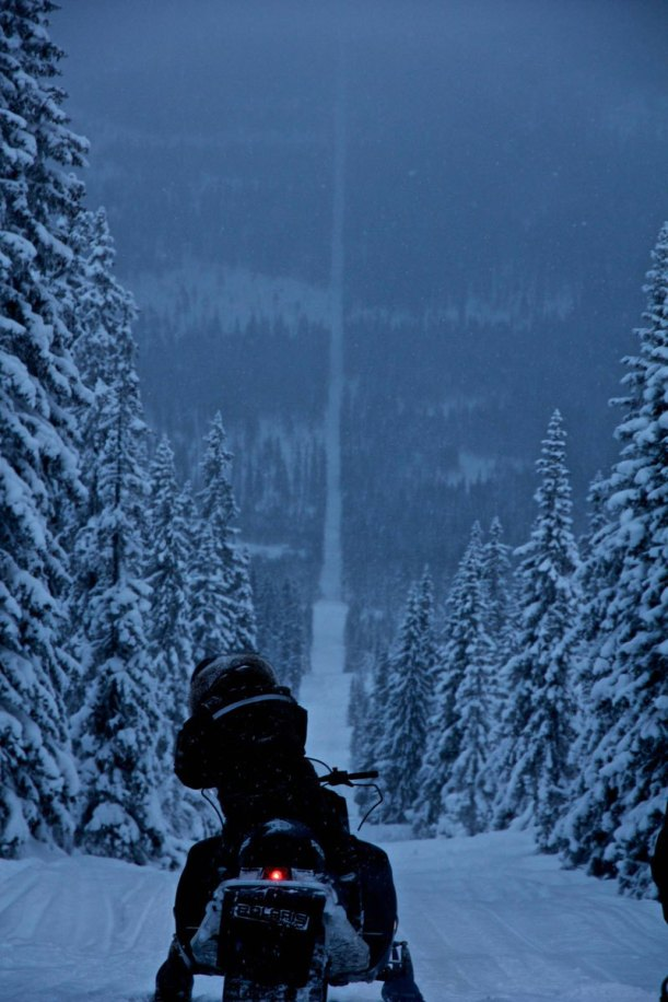 snowmobiling in the Norway-Sweden border